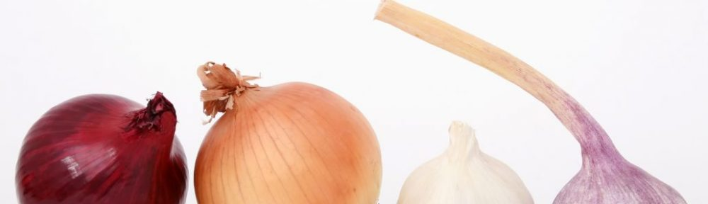 Onion and garlic - a force for good?